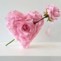 Love for Yasmine  Pretty Pink for Yasmine Collaboration.jpg